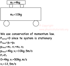 conservation of momentum with examples