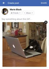 How To Post A Meme On Facebook - how to post a gif on facebook tech advisor
