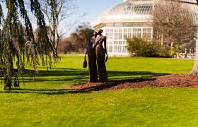 National Botanic Gardens Dublin by 9 Beautiful Gardens In Ireland You Should Visit Soon Thejournal Ie