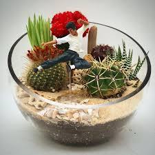 wowsome cactus terrarium action figure in los angeles ca