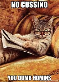 Meme Generator Cat - cat reading newspaper meme generator mne vse pohuj