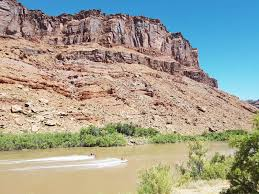 lions back moab drinks canyon camping area moab ut 3 hipcamper reviews and 3 photos