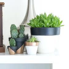 designer indoor plant pots australia designer plant pots indoor