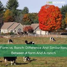 farm vs ranch differences and similarities between a farm and a