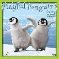 Penguin Birthday Meme - 52 best penguins images on pinterest penguin penguins and