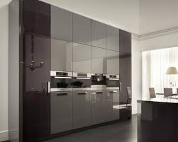 cabinet replacement kitchen cabinet doors beautiful cabinet