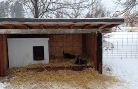 diy cold weather dog house what to know