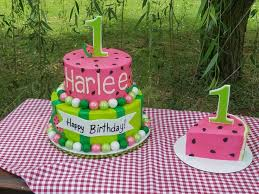 Watermelon Cake Decorating Ideas The 25 Best Watermelon Birthday Cakes Ideas On Pinterest Cute
