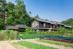 ancient chinese traditional hakka house with vegetable garden