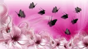 pink lilies butterflies wallpaper