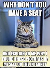 Meme Kitty - image kitty meme jpg animal jam clans wiki fandom powered by