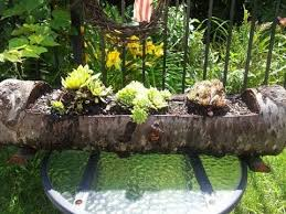 How To Make Planters by How To Make A Natural Wood Log Planter Using Wood Burning