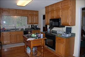 Kitchen  Easy Kitchen Updates Kitchen Cabinet Refacing Cabinet - Paint for kitchen cabinet doors