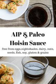 aip u0026 paleo hoisin sauce the sweet pea blogger