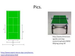 tennis court ping pong table