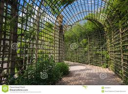 alley in the trellis in gardens of versailles palace stock photo
