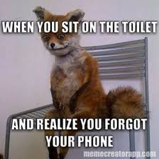 Top Ten Funniest Memes - top 10 funniest stoned fox memes nowaygirl giggles pinterest