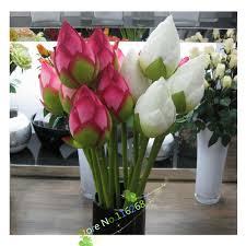 send flower send flower promotion shop for promotional send flower on