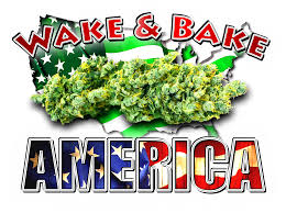 Wake N Bake Meme - wake and bake america 2 vanripster dude grows