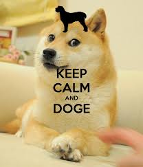 Meme Wallpaper For Iphone - doge meme wallpaper wallpapersafari