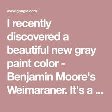 the 25 best benjamin moore weimaraner ideas on pinterest