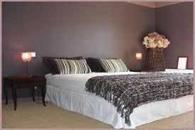 chambre aubergine chambre aubergine et beige 7 lzzy co