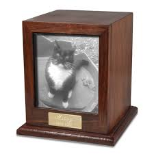 pet urns for cats cat urns photo display pet urns memorial gallery pets