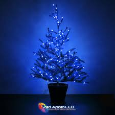 String Of Led Lights by Blue Led String Light 32ft
