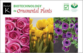 new isaaa pocket k biotechnology in ornamental plants vien khoa