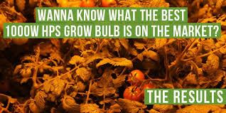 best hps grow lights the best 1000w hps grow bulbs par output test growace