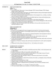 executive director resume executive director resume sles velvet