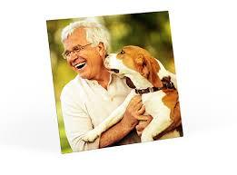Personalized Dog Photo Album Custom And Personalized Photo Gifts U0026 Gift Ideas Sam U0027s Club Photo