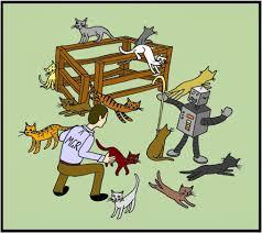 Herding Cats Meme - confessions of a watery tart cat herding killer serials coming