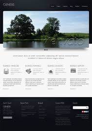20 professional business website templates for branding