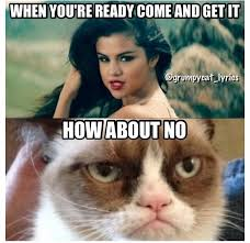 Come And Get It Meme - how about no funny pinterest grumpy cat mlp and meme