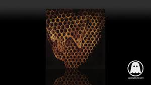 telefon tel aviv what it is without the that wields it