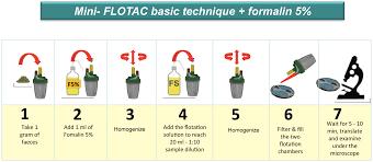 mini flotac an innovative direct diagnostic technique for