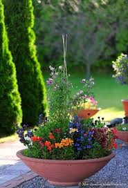 past flowers container gardening flowers and gardens