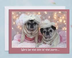 funny birthday card for her life of the party happy birthday