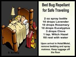 What Kills Bed Bugs For Good Bed Bug Spray U2026 Pinteres U2026