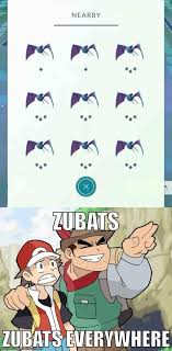 Zubat Meme - zubats zubats everywhere tumblr pinterest pokémon pokemon