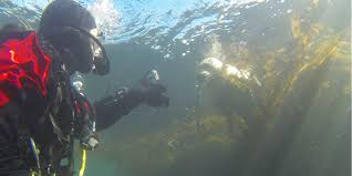 faq support center u2013 diving lessons and scuba certification