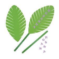 palm leaves for palm sunday palm sunday palms palm crosses living grace