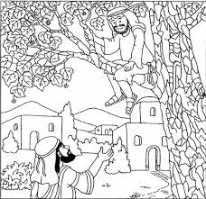Zacchaeus Coloring Page Fablesfromthefriends Com Zacchaeus Coloring Page