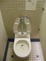 the water closet june isabella stewart gardner museum boston where the only criminal act occuring inability understand french