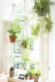 indoor hanging garden diy hanging window garden 2 logo wonderful
