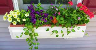Garden Boxes Ideas Best Window Flower Boxes Ideas Best Home Decor Inspirations