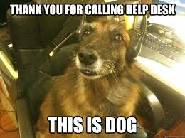 This Is Dog Meme - thank you for calling help desk this is dog dogs pinterest dog