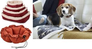 Self Warming Pet Bed Doggone Cold Keep Your Pooch Warm Safe And Entertained Through