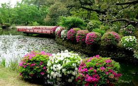 beautiful house with flower garden best and awesome images